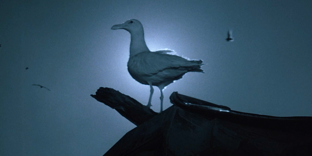 Blu-ray Review: Jonathan Livingston Seagull (1973)